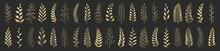 Set Of Gold Laurels Branches. Flower Ornament Dividers Collection. Vintage Laurel Wreaths. Hand Drawn Vector Laurel Leaves Decorative Elements. Leaves, Swirls, Ornate, Award, Icon.