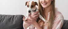 Cropped View Of Cheerful Woman Holding In Arms Jack Russell Terrier, Banner