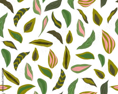 Abstract leaves background vector illustration hand draw design  Wall mural