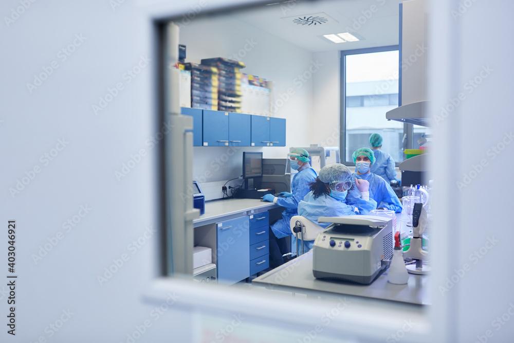 Fototapeta Forscher Team arbeitet an Covid-19 Impfstoff im Labor