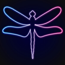 Neon Dragonfly On Black Background