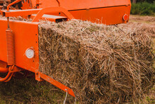 Pressing Hay Into Bales, Old Working Press, Harvesting And Harvesting Dry Fodder.