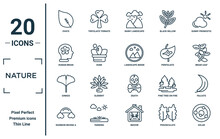 Nature Linear Icon Set. Includes Thin Line Ovate, Human Brian, Ginkgo, Rainbow Behind A Cloud, Solar, Landscape Inside Frame, Falcate Icons For Report, Presentation, Diagram, Web Design