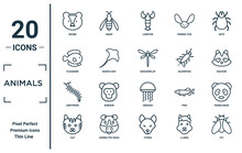 Animals Linear Icon Set. Includes Thin Line Skunk, Flounder, Centipede, Cat, Fly, Dragonflay, Panda Bear Icons For Report, Presentation, Diagram, Web Design