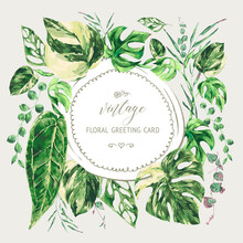 Vector Watercolor Tropical Green Leaves. Monstera Variegated Greenery Illustration