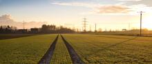 Lanschaft Mit Feld In Der Goldenen Tiefstehenden Wintersonne