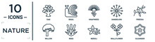 Nature Linear Icon Set. Includes Thin Line Oak, Knapweed, Freesia, Reed, Wallflower, Oleander, Willow Icons For Report, Presentation, Diagram, Web Design