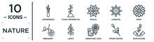 Nature Linear Icon Set. Includes Thin Line Lemongrass, Dahlia, Daisy, Larch, Spear Shaped, Save Nature, Bergamot Icons For Report, Presentation, Diagram, Web Design