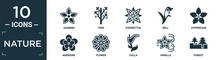 Filled Nature Icon Set. Contain Flat Jasmine, Tree, Poinsettia, Bell, Hypericum, Anemone, Flower, Calla, Vanilla, Forest Icons In Editable Format..