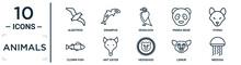 Animals Linear Icon Set. Includes Thin Line Albotros, Deadlock, Hyena, Ant Eater, Lemur, Medusa, Clown Fish Icons For Report, Presentation, Diagram, Web Design