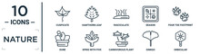 Nature Linear Icon Set. Includes Thin Line Cuspicate, Fasciculate, Four Toe Footprint, Sprig With Five Leaves, Ginkgo, Orbicular, Dune Icons For Report, Presentation, Diagram, Web Design