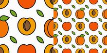 Apricot Fruit Pattern. Linear Pattern Of Slice