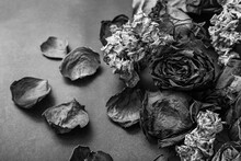Black And White Flowers And Roses Dried On A Rough Background.