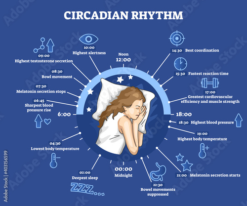 Photo Circadian rhythm as educational natural cycle for healthy sleep and routine