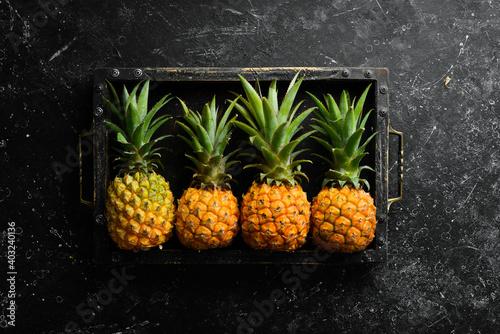 Fototapeta Sweet baby pineapple on a black stone background