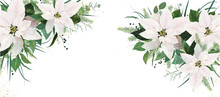 Elegant Festive Winter Season Floral Site Banner Facebook Cover Design. White Poinsettia Flowers, Christmas Spruce Tree Twigs, Eucalyptus Greenery Branches, Green Leaves, Herbs Watercolor Illustration