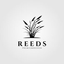 Vintage Reeds Logo Vector Symbol Illustration Design