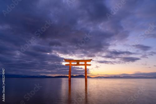 Fotografia 滋賀県高島市の白鬚神社|日の出前の琵琶湖に浮かぶ大鳥居