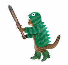 A Cat In Green Dragon Clothing And Boots Holds A Sword. White Background. Isolated.