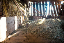 Sunbeams Falling On A Wagon With Hay In An Old Wooden Barn. Pitchfork Leaning Against A Brick Wall.