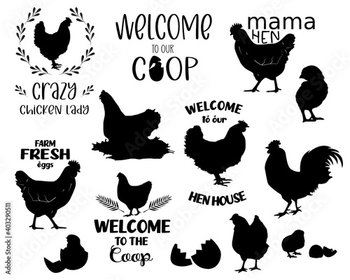 Fotografia Chicken Bundle svg, hen svg, rooster svg, chicken svg funny, crazy chicken lady
