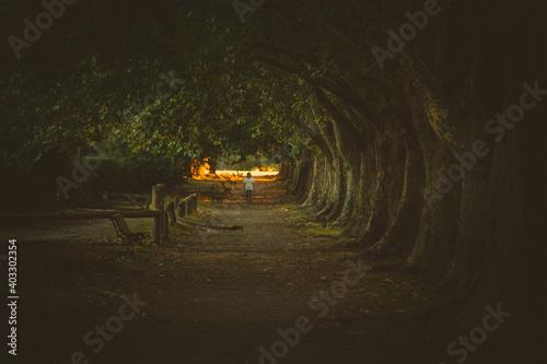 Fotografering un túnel y una escena de terror invaden la imagen