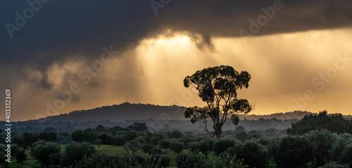 Fotografia, Obraz nascer do sol