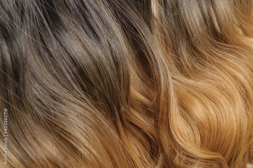 Fototapeta close up of wavy brown blended to blonde two tone ombre style synthetic hair extensions