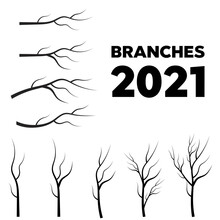 Tree Branches Set Closeup Watercolor. Vector Tree Branches Silhouette
