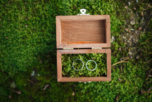 Wedding Rings In A Wooden Case. Wedding Rings On The Moss. Wooden Box On The Moss.