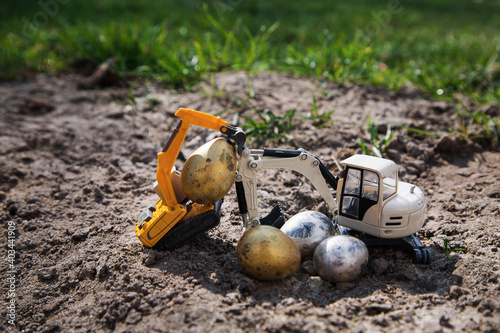 Canvas Print On the ground, against a backdrop of green spring grass, two toy excavators are carrying small quail eggs painted in gold and silver