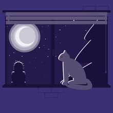 The Cat Sits On The Windowsill And Looks Out The Window, The Night Is Outside The Window, The Moon Is Shining Through The Window