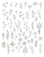 Collection Set With Varied Simple Small Pink, Blue And Green Flowers, Plants And Leaves Isolated On White Background. Watercolor Hand Drawn Illustration