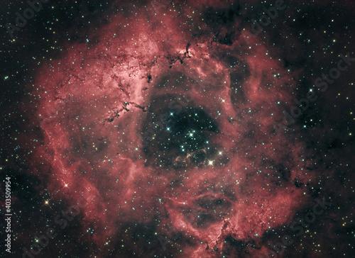 Obraz na plátně Rosette Nebula