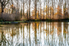 Lake With Mirror Reflection On The Water Surface Of The Surrounding Bare Trees, A Slightly Sunny Winter Day In Sweikhuizen, South Limburg, The Netherlands