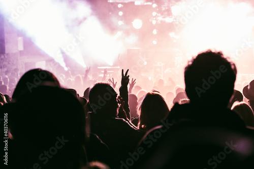 Tablou Canvas crowd at concert