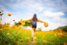 Close Up Of A Yellow Flower In The Garden And A Woman Walking In The Garden