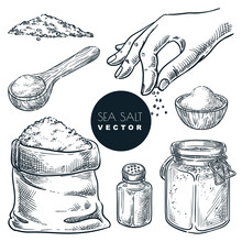 Sea Salt Sketch Vector Illustration. Natural Ingredient, Seasoning Spice. Hand Drawn Isolated Design Elements