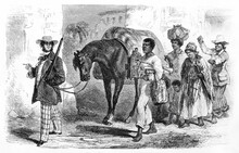 Slaves Seller Pulling Mule In Rio De Janerio Leading Women, Men And Children Somewhere Outdoor. Ancient Grey Tone Etching Style Art By Trichon, Le Tour Du Monde, 1861