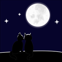 Couple Of Cats Near The Moon