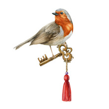 Robin Bird With Vintage Golden Key Watercolor Illustration. Hand Drawn Realistic Garden Bird Hold Retro Style Metal Key With Red Pendant. Elegant Hand Drawn Romantic Decoration On White Background.