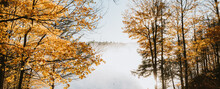 Foggy Morning View Of Lake Through The Trees On An Autumn Day.