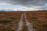 Parallel trails lead thogh high mountain landscape along Kungsleden Trail, Lapland, Sweden