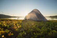 Late Evening Summer Sun Behind Tent Near Lake Virihaure, Padjelantaleden Trail, Padjelanta National Park, Lapland, Sweden