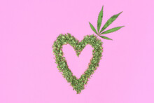 Heart Made With Cannabis And Marijuana Leaf On Pink Background.