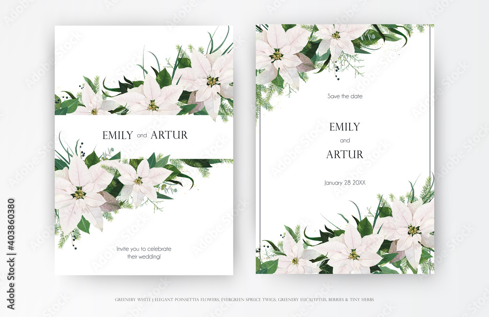 Fototapeta Classy winter season wedding floral invite, invitation, greeting card editable vector art template set. White Poinsettia flower, Christmas spruce tree, Eucalyptus greenery leaves, wreath bouquet frame