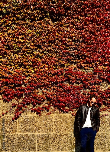 Fotografie, Obraz Man Standing By Ivies On Wall