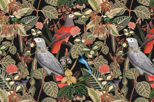Bird pattern background jungle illustration Fototapeta
