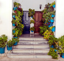 Entrance With Pots To A House