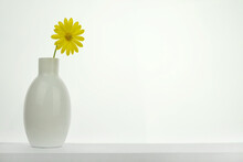 Close-up Of Sunflower In Vase On Table Against White Background